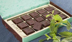 Миниатюра к статье Прохлада вкуса и мятный аромат: особенности и марки шоколада с мятой