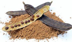 Миниатюра к статье Вместо шоколада: как применять сироп рожкового дерева и чем полезен кэроб